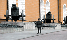 kremlin soldier and cannons